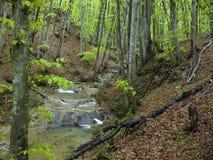 flod för 01 berg Royaltyfria Bilder