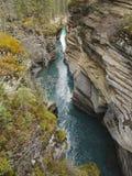 flod för athabascajaspernationalpark Arkivfoton