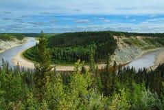 flod för böjningshönwt Arkivbilder