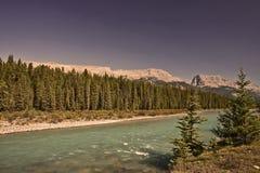 flod för banff bownationalpark Fotografering för Bildbyråer