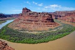 flod för canyonlandscolorado nationalpark Royaltyfri Fotografi
