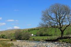 flod för cautleycumbriarawthey Arkivbilder