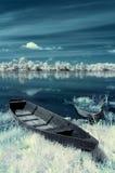 flod för fartygporslinhunan landskap Arkivbild