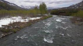 Flod för montering för tidigt vårlandskap kall, precis blomma träd längs flodbanker stock video