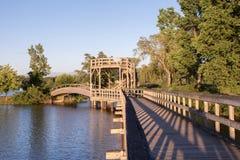 flod för reflexion för buskespångpark Arkivbilder