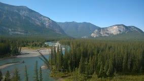 Flod för skog för träd för pilbågedalbanff berg Fotografering för Bildbyråer