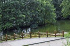 Flod flodstrand, vatten, lopp, dag, lägen, vatten, sommar Royaltyfria Foton