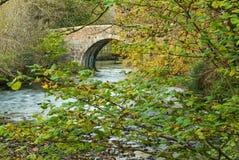 Flod Fowey på den Respryn bron Royaltyfri Fotografi