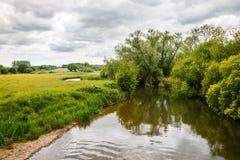 Flod Frome Holmebridge Dorset Royaltyfri Fotografi