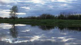 Flod i aftonen, en lös flod med en blå molnig himmel stock video