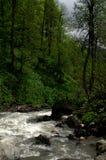 Flod i berg Royaltyfri Bild