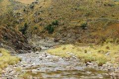 Flod i berg Fotografering för Bildbyråer