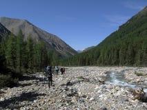 Flod i bergen Arkivbild
