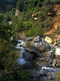 Flod i bergen royaltyfria bilder