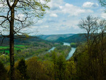 Flod i bergen Arkivbilder