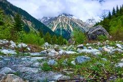 Flod i bergen av Svaneti på våren royaltyfria bilder