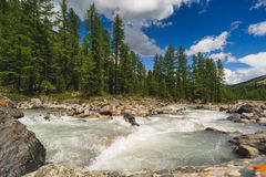 Flod i bergen Landskap Arkivbilder