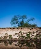 Flod i blått Arkivfoton