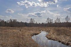 Flod i bygd royaltyfria bilder