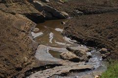 Flod i bygd Fotografering för Bildbyråer