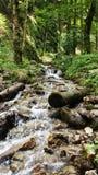 Flod i canionen Rumänien för 7 trappa Arkivfoton