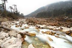 Flod i dalen Arkivfoto