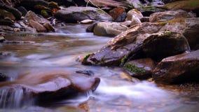 Flod i den djupa Tennessee Mountain Woods, med stenar som täckas i mossa Royaltyfria Bilder