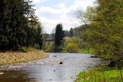 Flod i den härliga vårskogen Royaltyfri Fotografi