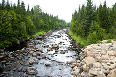 Flod i den Jacques-Cartier nationalparken Royaltyfri Bild