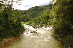 Flod i den Sri Lanka rainforesten Royaltyfri Foto