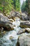 Flod i den Yosemite nationalparken Arkivfoton