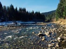 Flod i det carpathians Arkivfoto