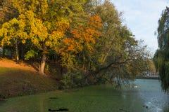 Flod i det Woluwe helgonet Lambert Arkivbilder