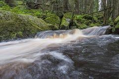 Flod i en skog, Sumava Royaltyfria Bilder