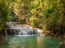 Flod i en skog, Thailand Arkivbilder