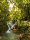 Flod i en skog, Thailand Fotografering för Bildbyråer
