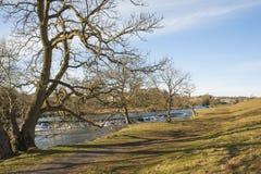Flod i ett engelskt bygdlandskap Arkivfoton