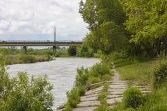 Flod i gräsplanträd för solig dag och bro i sikt Royaltyfria Foton