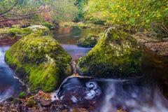 Flod i höst Fotografering för Bildbyråer