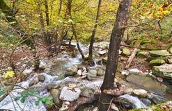 Flod i Karditsa forset Thessaly Grekland Fotografering för Bildbyråer