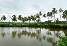 Flod i Konkan Arkivbilder