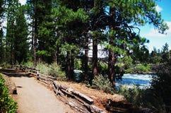 Flod i krökningen Oregon Arkivbilder