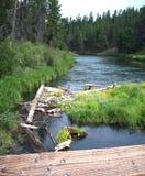 Flod i krökningen Oregon Fotografering för Bildbyråer
