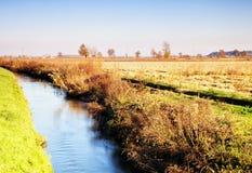 Flod i landet Royaltyfria Bilder