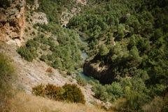 Flod i landskapet Royaltyfri Bild
