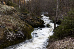 Flod i Oppegård Norge Arkivfoton