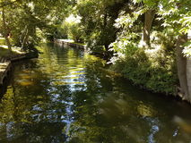 Flod i parkera Arkivfoton
