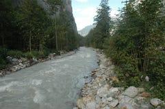 Flod i skog Royaltyfria Foton