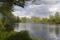 Flod i skogen Royaltyfri Fotografi