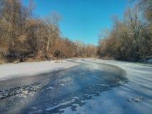 Flod i skogen arkivbilder